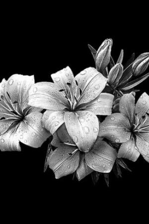 Цветок 22 - Гравировка цветка на памятнике, производство и доставка по РФ